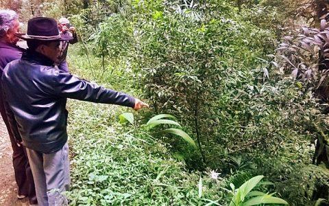 MASS-GRAVES: Salah satu dari 3 lokasi pembantaian massal dan pembuangan mayat di situs cagar alam Gunung Tilu, Bandung selatan. Seorang warga tengah menunjukkan jurang (31/10) berdasarkan petunjuk pelaku pembantaian yang telah bertaubat dan minta maaf sebelum meninggal [Foto: Humas YPKP65]