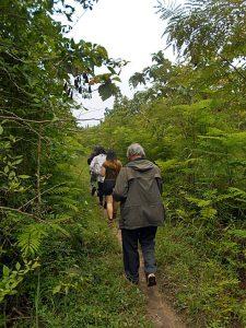 """JEGONG: Jalan setapak menuju hutan """"Jegong"""" di kawasan Perhutani Barisan [Foto: Humas YPKP65]"""