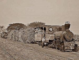 87420: Menarik lori tebu di areal Pabrik Gula Tersanabaru, Babakan, Cirebon [ist]