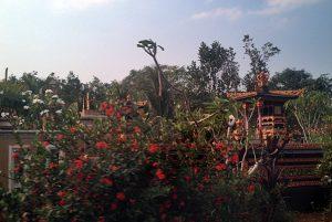 PURA: Banyak Pura banyak didapati dibangun di sisi Jalur Lintas Timur Sumatra, tak berjauhan dengan bangunan tempat ibadah seperti majid dan mushola. Saling berdampinan [Foto: Humas YPKP 65]