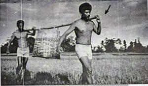 PULAU BURU: Kamp Kerja Paksa Tapol Pulau Buru [Foto: Dokumen Pribadi Roedi]