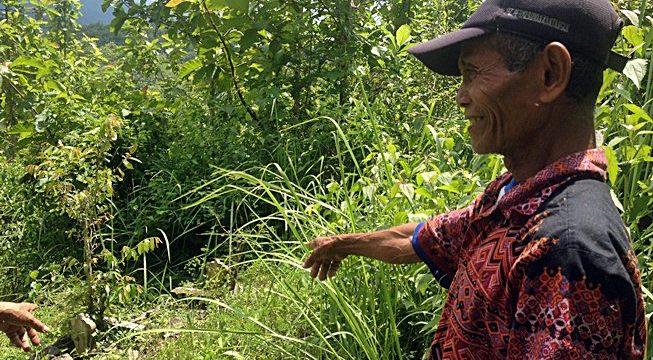 KUBURAN MASSAL: Seorang penduduk Desa Dungus tengah menunjukkan lokasi kuburan massal korban Tragedi 65 yang diduga berisi 150 orang di Jurang Uni Hutan Dungus, Kabupaten Madiun [Foto: Humas YPKP 65]