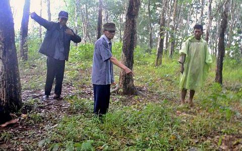Lokasi diduga kuburan massal PKI di Tanah Kafir, Cipari, Cilacap, Jawa Tengah. (Foto: Liputan6.com/Muhamad Ridlo)